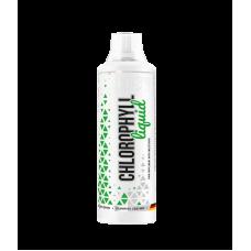 MST Liquid Chlorophyll 1 литр (Хлорофилл)
